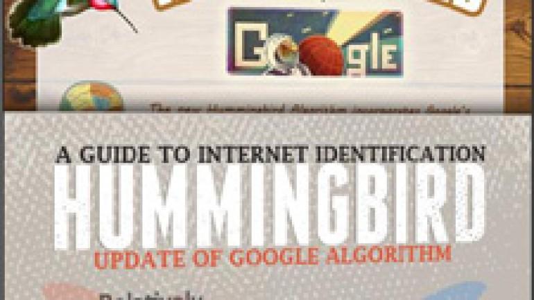 Google'ın yeni Hummingbird algoritmasının SEO'ya etkileri infografik