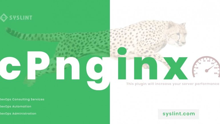 cPnginx 10.20 nulled