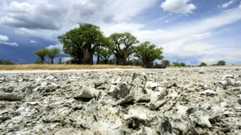 Modern insanın ataları ile ilgili yeni araştırma: Botsvana'dan çıkıp, diğer bölgelere yayıldılar